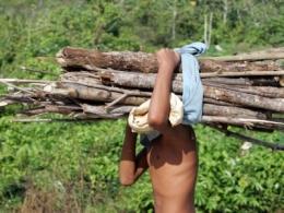 Regra dificulta pena por trabalho escravo